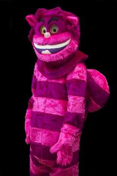 Pink Cheshire Cat