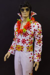 Elvis Presley Fancy dress costume