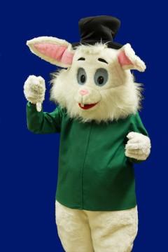 White Rabbit2